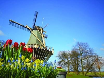 AUTH - EUR - AMS - Windmill