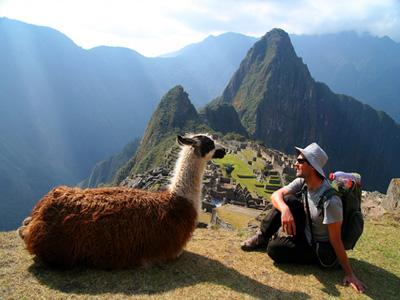 AUTH-Peru-Llama-Hiker-Machu-Pichu