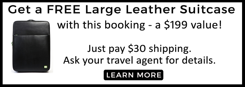 Large Leather China Promo for webpage copy