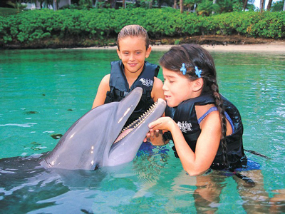 AUTH - NCL - kids with dolphins
