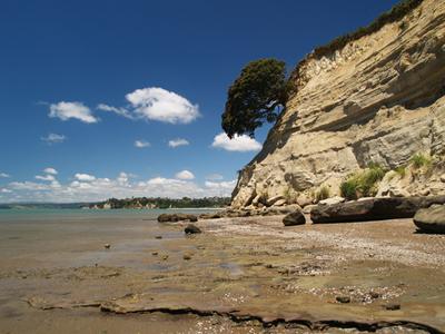 AUTH - New Zealand - Auckland - Eastern Beach