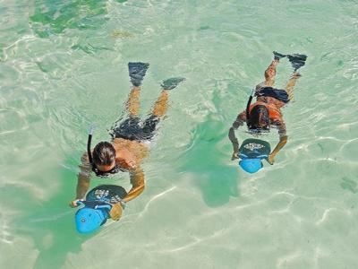 AUTH - CEL - Bermuda snorkel
