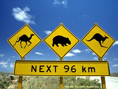 AUTH - Aussie Sign 2015