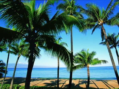 Beach at Kaanapali, Maui, Hawaiian Islands